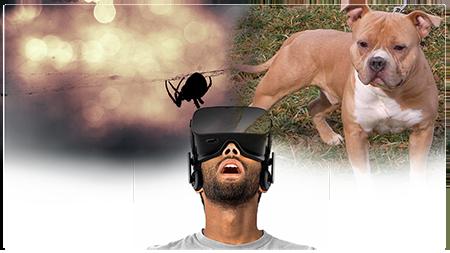 sistemas virtuales destinados a la psicologia